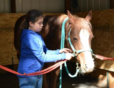 THERAPEUTIC HORSEMANSHIP